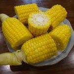 トウモロコシの低温蒸し