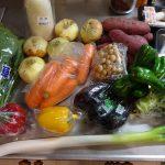 ホットクック調理で使う野菜の選び方