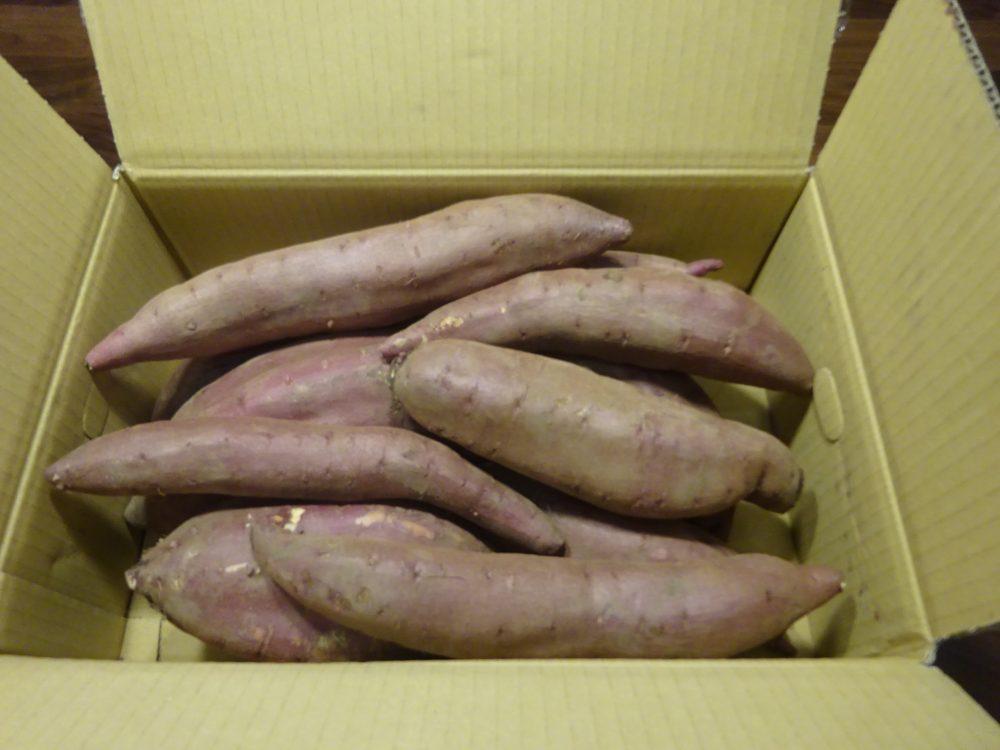 メルカリで野菜購入、サツマイモ
